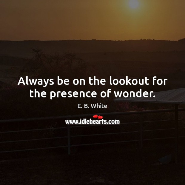 Always be on the lookout for the presence of wonder. Image