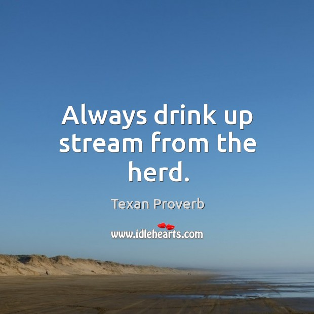 Always drink up stream from the herd. Texan Proverbs Image