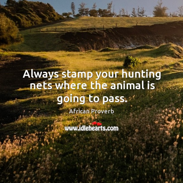 Always stamp your hunting nets where the animal is going to pass. Image