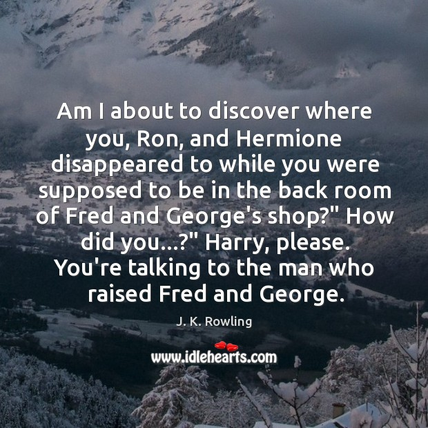 Image, Am I about to discover where you, Ron, and Hermione disappeared to