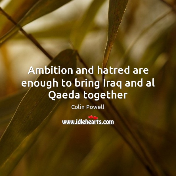 Ambition and hatred are enough to bring Iraq and al Qaeda together Colin Powell Picture Quote
