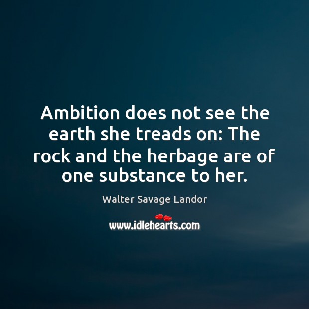 Ambition does not see the earth she treads on: The rock and Walter Savage Landor Picture Quote
