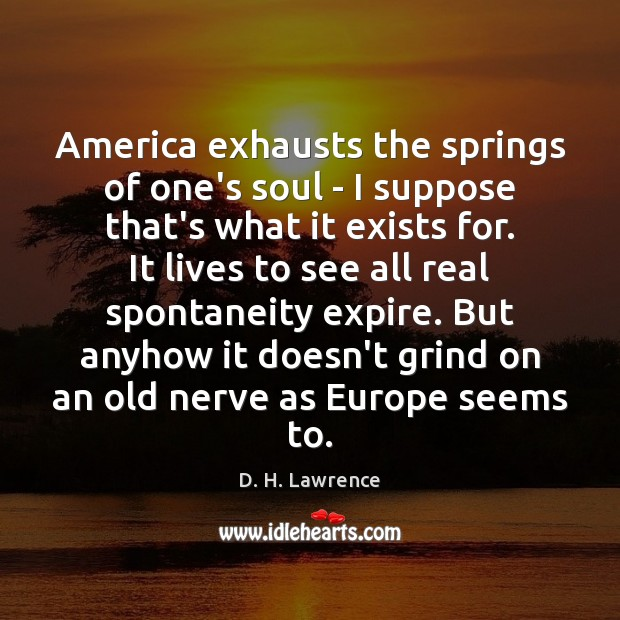 America exhausts the springs of one's soul – I suppose that's what Image