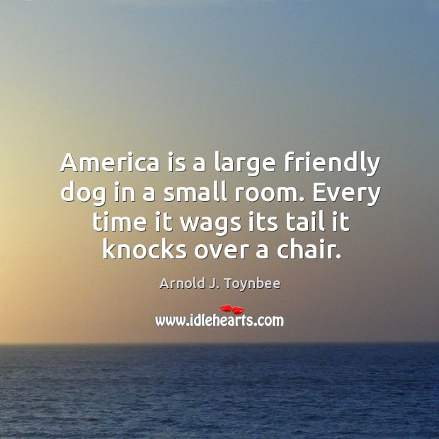 Image, America is a large friendly dog in a small room. Every time it wags its tail it knocks over a chair.