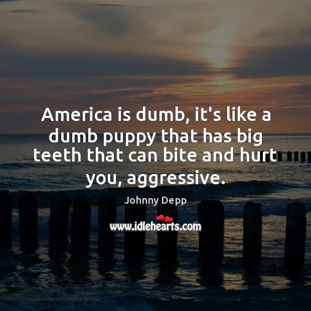 Image, America is dumb, it's like a dumb puppy that has big teeth