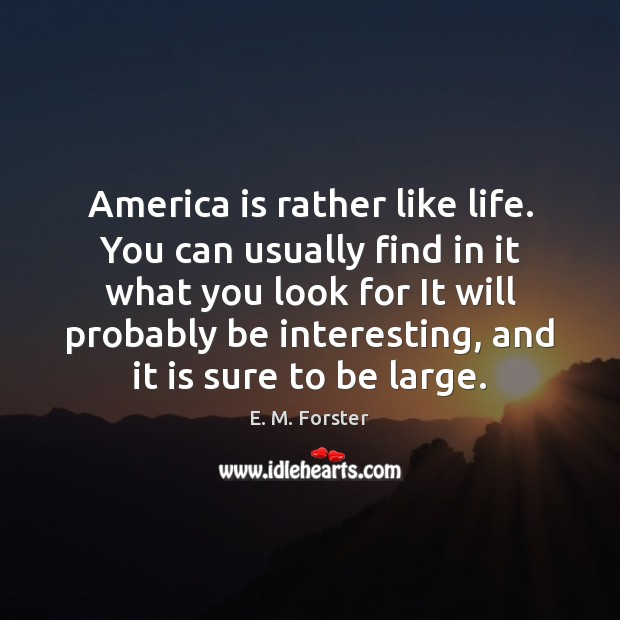 America is rather like life. You can usually find in it what Image