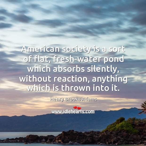 American society is a sort of flat, fresh-water pond which absorbs silently, without reaction, anything which is thrown into it. Image