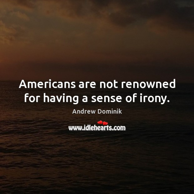 Image, Americans are not renowned for having a sense of irony.