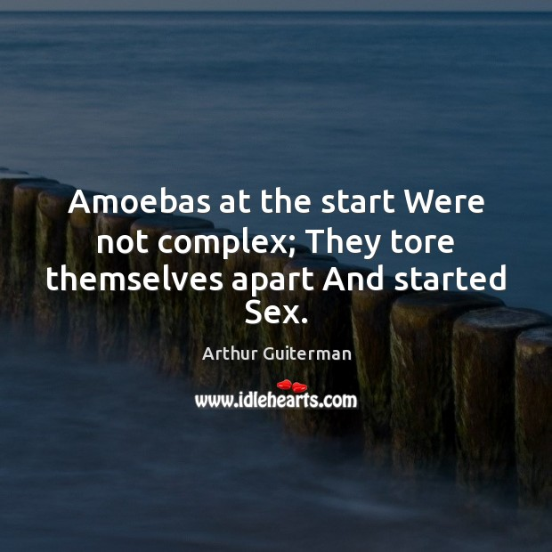 Image, Amoebas at the start Were not complex; They tore themselves apart And started Sex.