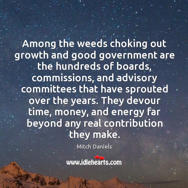 Among the weeds choking out growth and good government are the hundreds of boards Image
