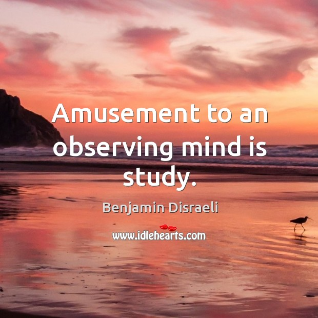 Amusement to an observing mind is study. Image