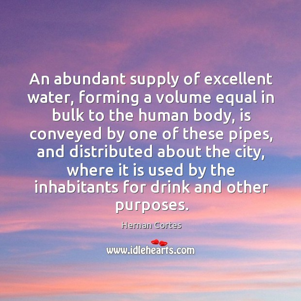 An abundant supply of excellent water, forming a volume equal in bulk to the human body Image