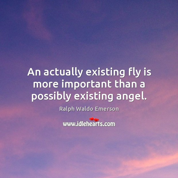 An actually existing fly is more important than a possibly existing angel. Image
