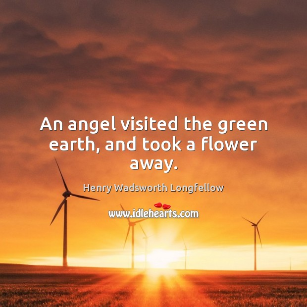 Image, An angel visited the green earth, and took a flower away.