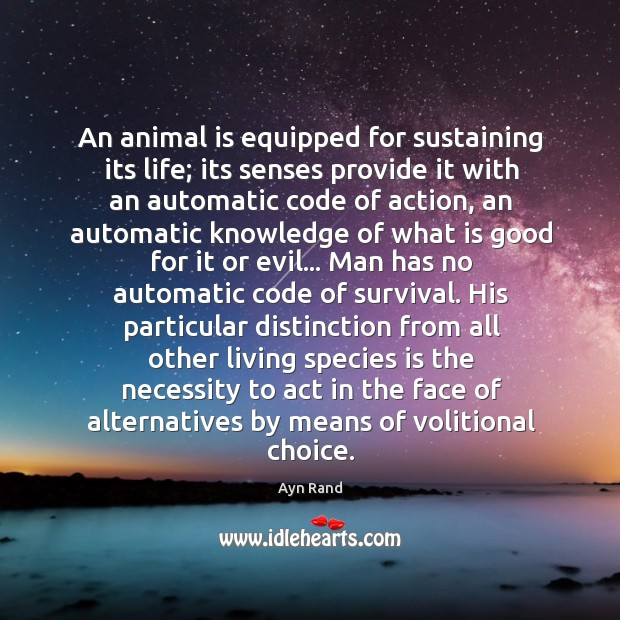 Image, An animal is equipped for sustaining its life; its senses provide it