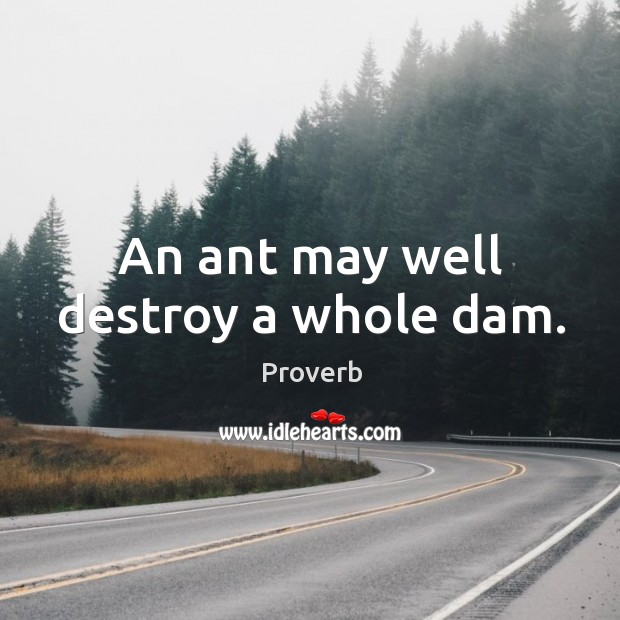 An ant may well destroy a whole dam. Image