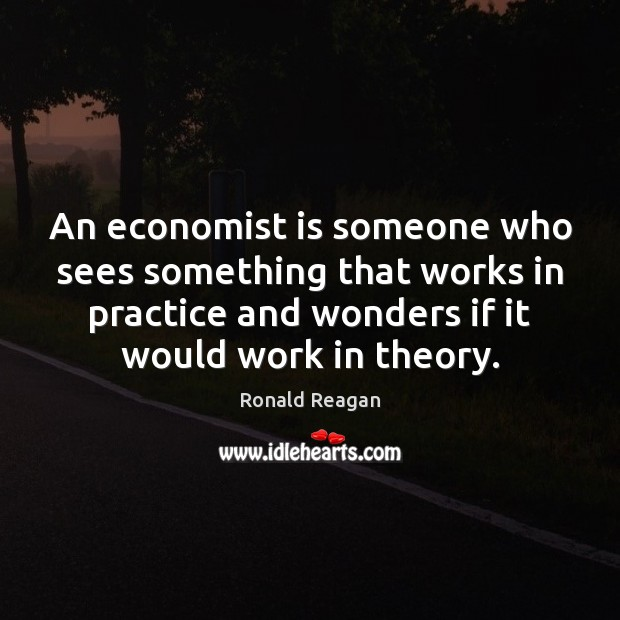 Image, An economist is someone who sees something that works in practice and