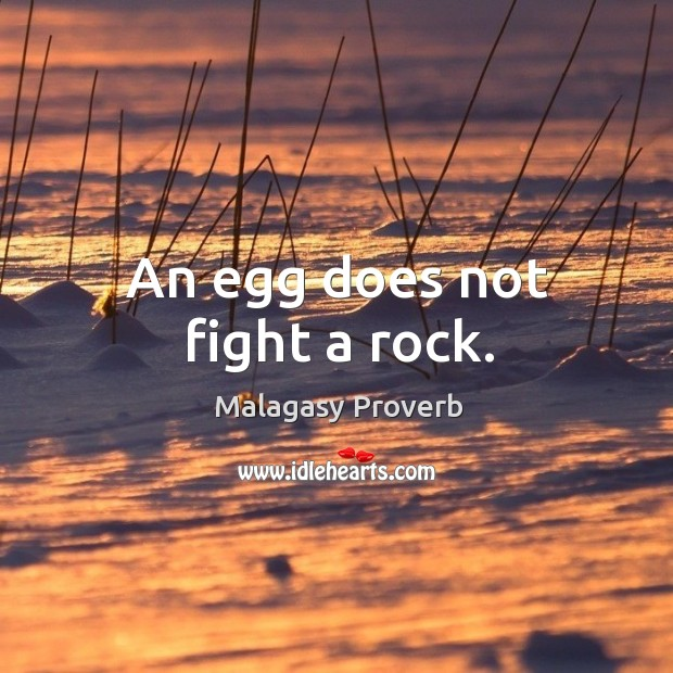 Image, An egg does not fight a rock.