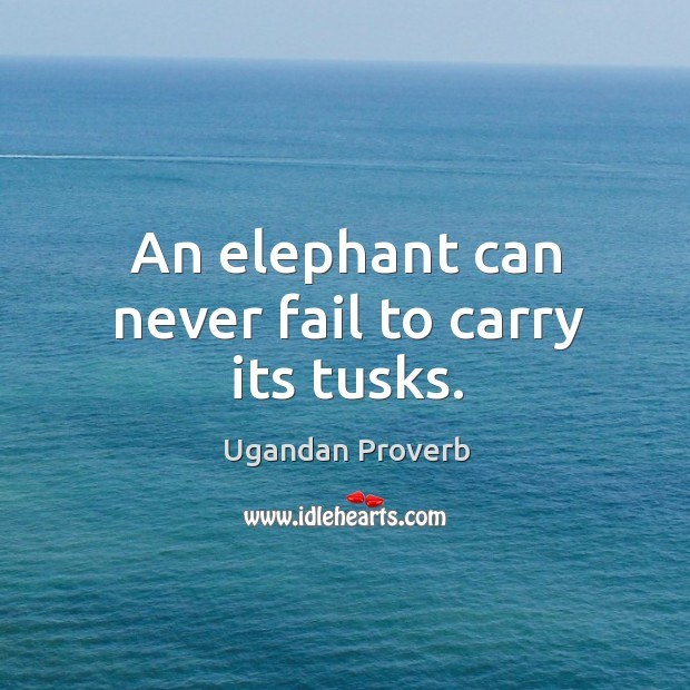 An elephant can never fail to carry its tusks. Ugandan Proverbs Image