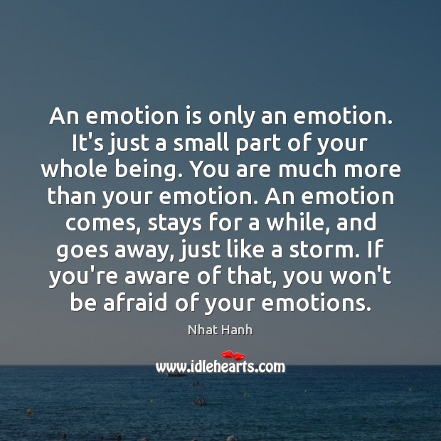 An emotion is only an emotion. It's just a small part of Nhat Hanh Picture Quote