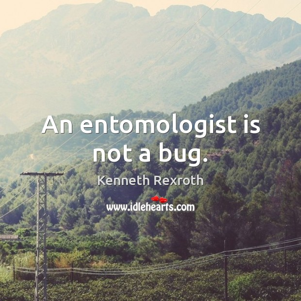 Image, An entomologist is not a bug.