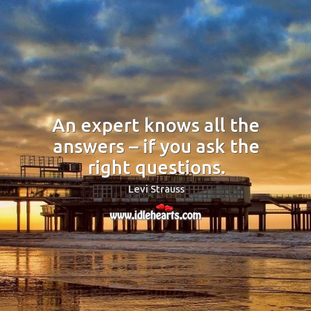 An expert knows all the answers – if you ask the right questions. Image