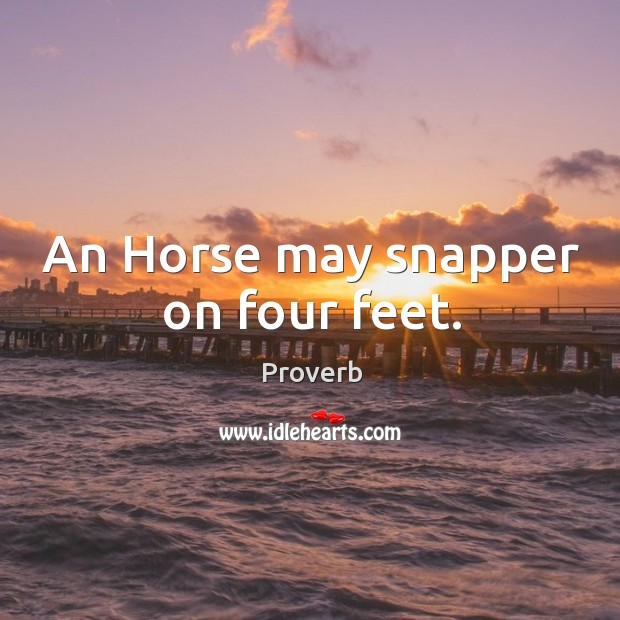 An horse may snapper on four feet. Image