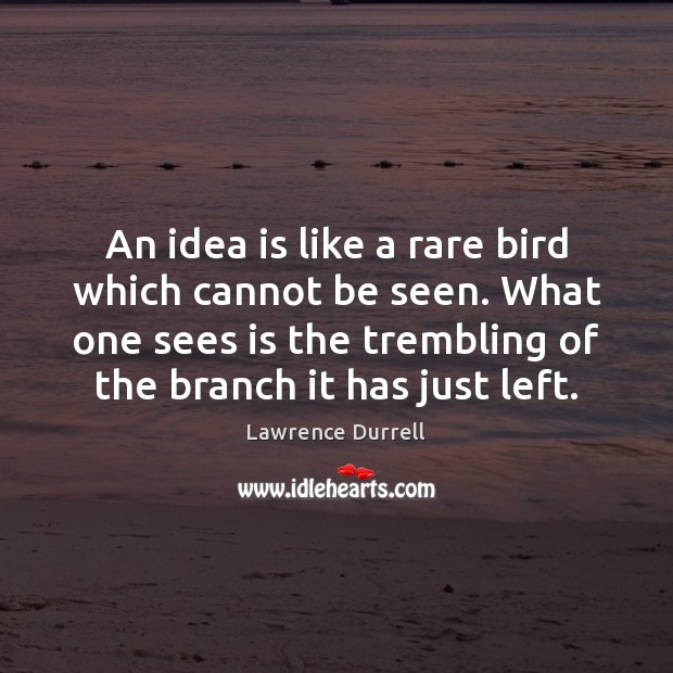 An idea is like a rare bird which cannot be seen. What Image