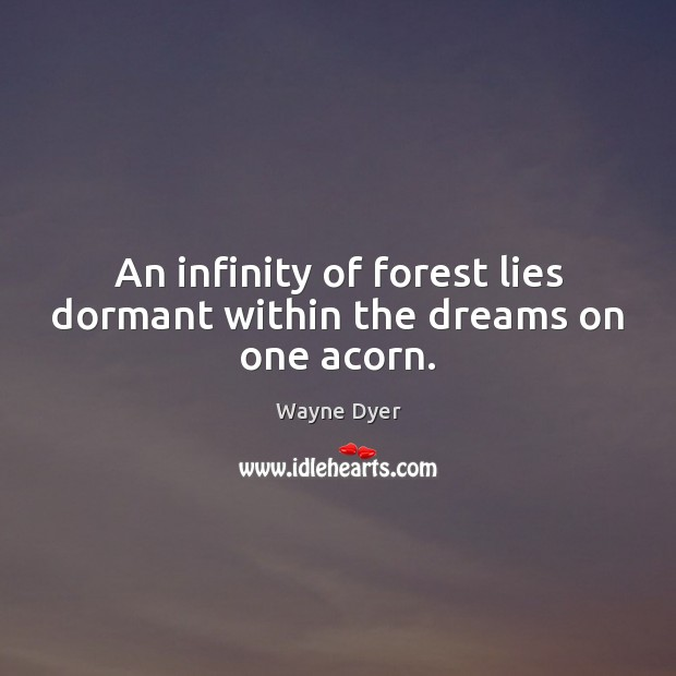 An infinity of forest lies dormant within the dreams on one acorn. Image