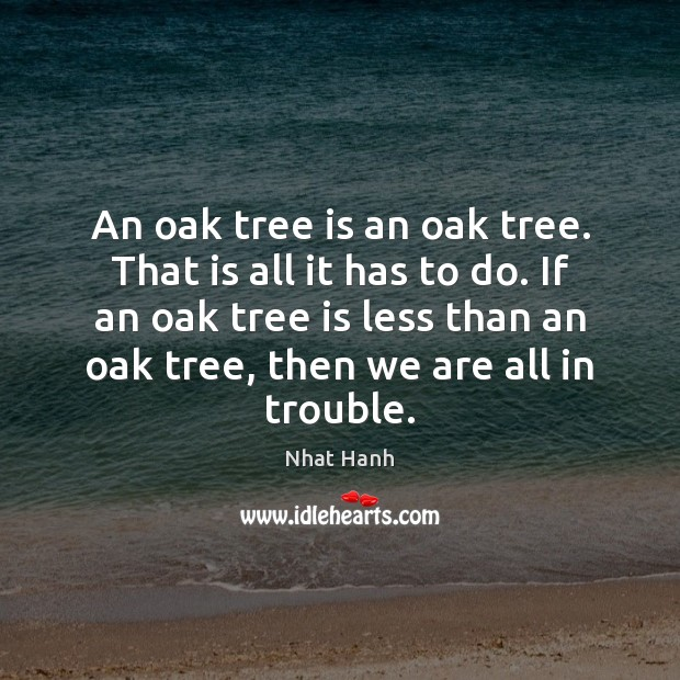 Image, An oak tree is an oak tree. That is all it has