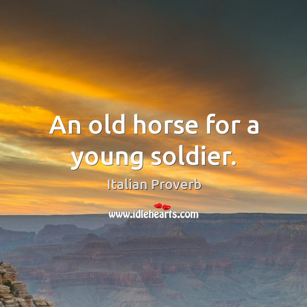 Image, An old horse for a young soldier.