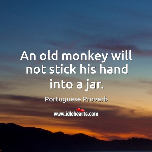Image, An old monkey will not stick his hand into a jar.