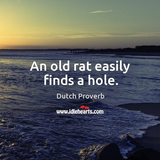 An old rat easily finds a hole. Dutch Proverbs Image