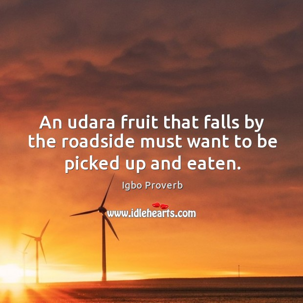 An udara fruit that falls by the roadside must want to be picked up and eaten. Igbo Proverbs Image