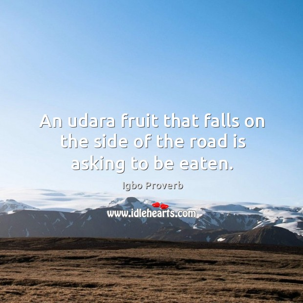 An udara fruit that falls on the side of the road is asking to be eaten. Igbo Proverbs Image