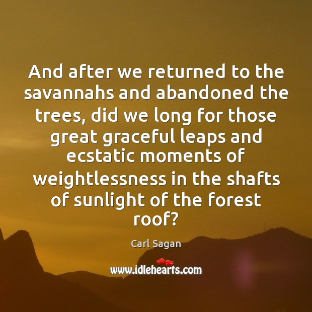 And after we returned to the savannahs and abandoned the trees, did Image
