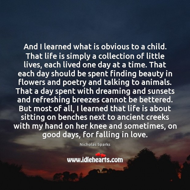 Image, And I learned what is obvious to a child. That life is