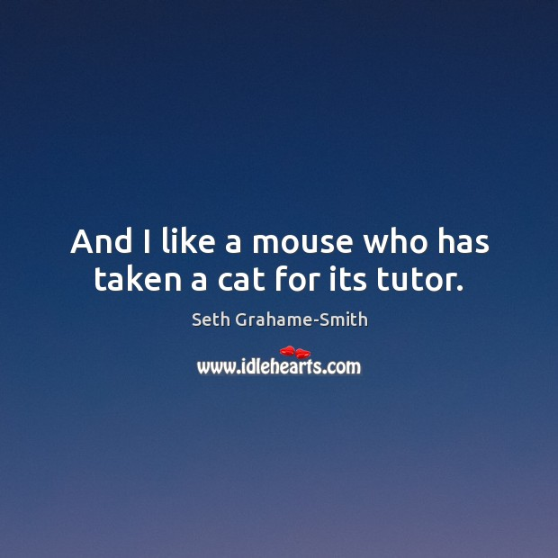 Image, And I like a mouse who has taken a cat for its tutor.