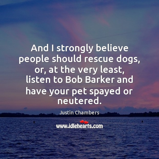 And I strongly believe people should rescue dogs, or, at the very Image