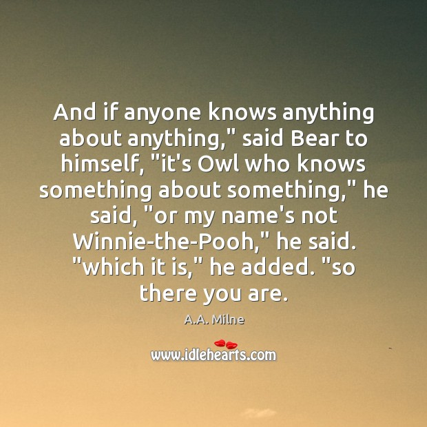 """And if anyone knows anything about anything,"""" said Bear to himself, """"it's Image"""