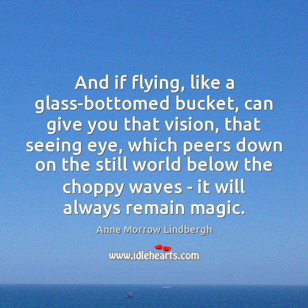 And if flying, like a glass-bottomed bucket, can give you that vision, Image