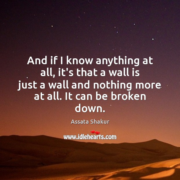 And if I know anything at all, it's that a wall is Assata Shakur Picture Quote