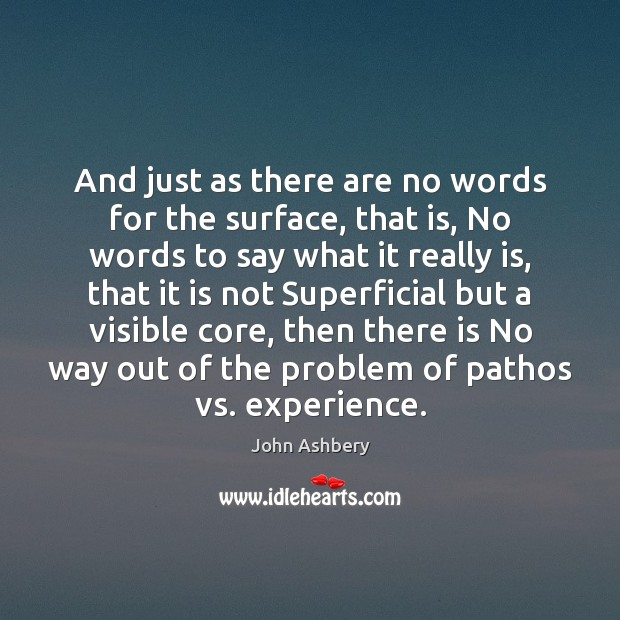 And just as there are no words for the surface, that is, John Ashbery Picture Quote