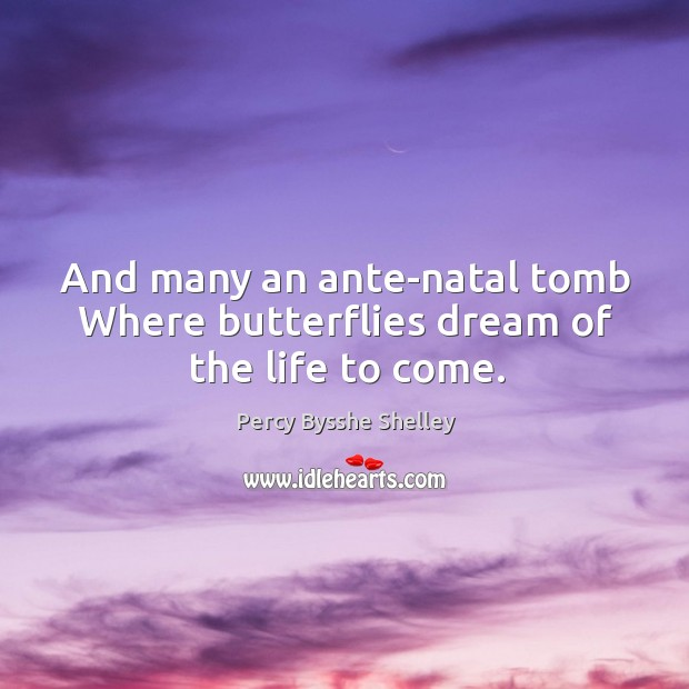 And many an ante-natal tomb Where butterflies dream of the life to come. Image