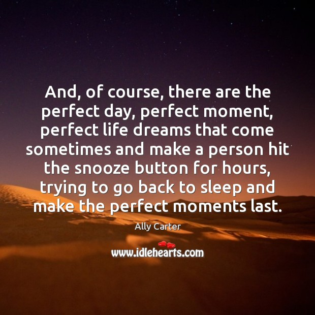 And, of course, there are the perfect day, perfect moment, perfect life Ally Carter Picture Quote