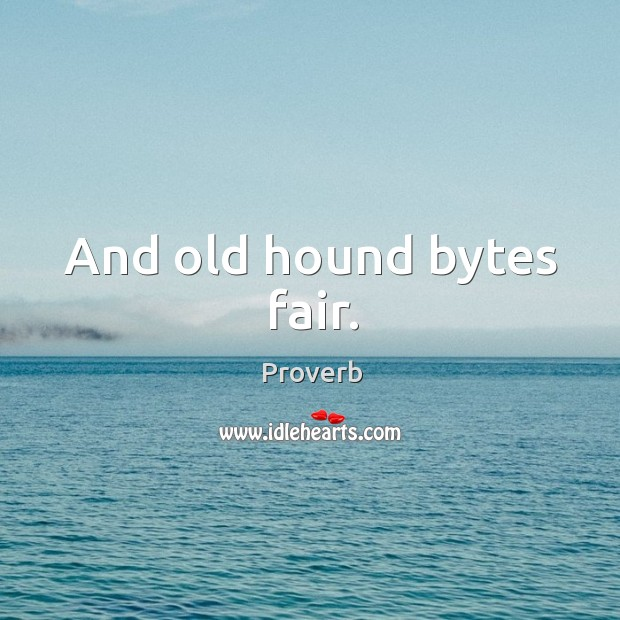 And old hound bytes fair. Image