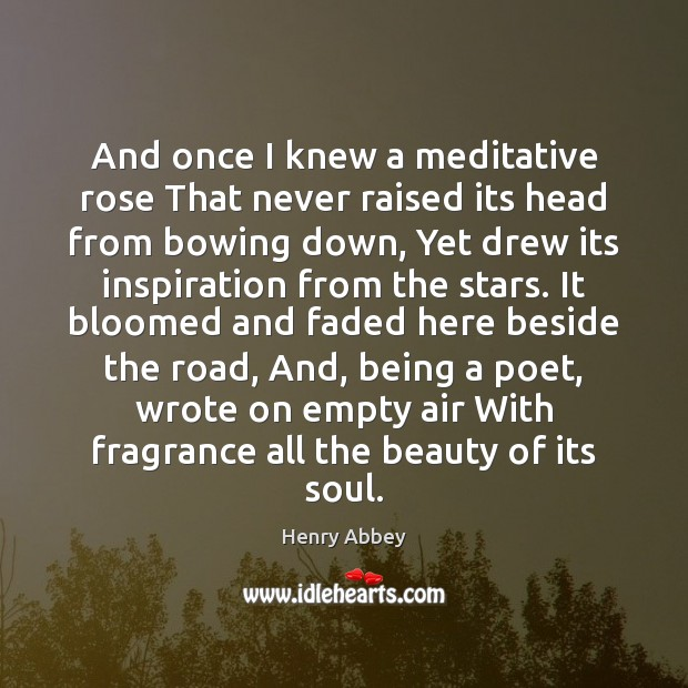 And once I knew a meditative rose That never raised its head Image