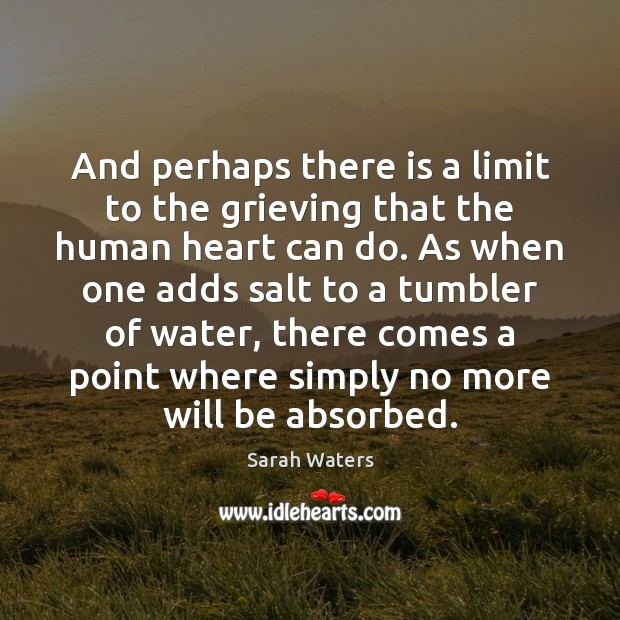 And perhaps there is a limit to the grieving that the human Sarah Waters Picture Quote