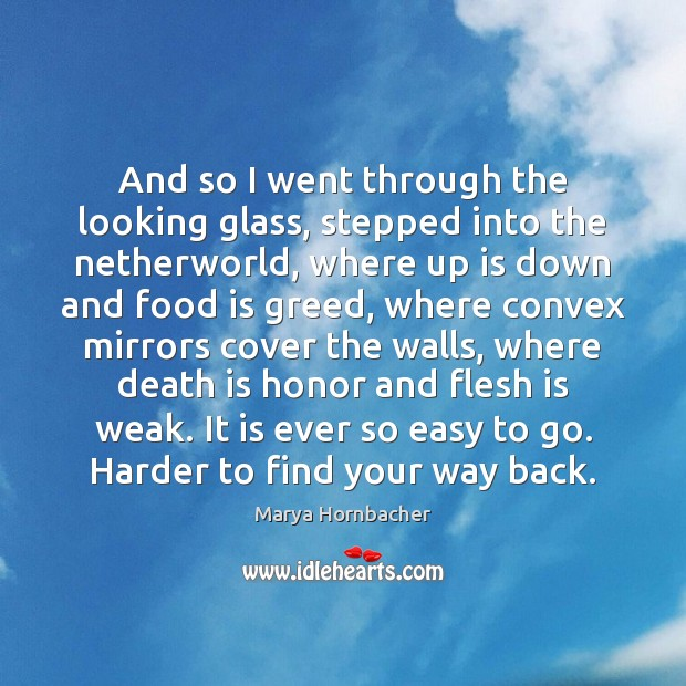 And so I went through the looking glass, stepped into the netherworld, Marya Hornbacher Picture Quote
