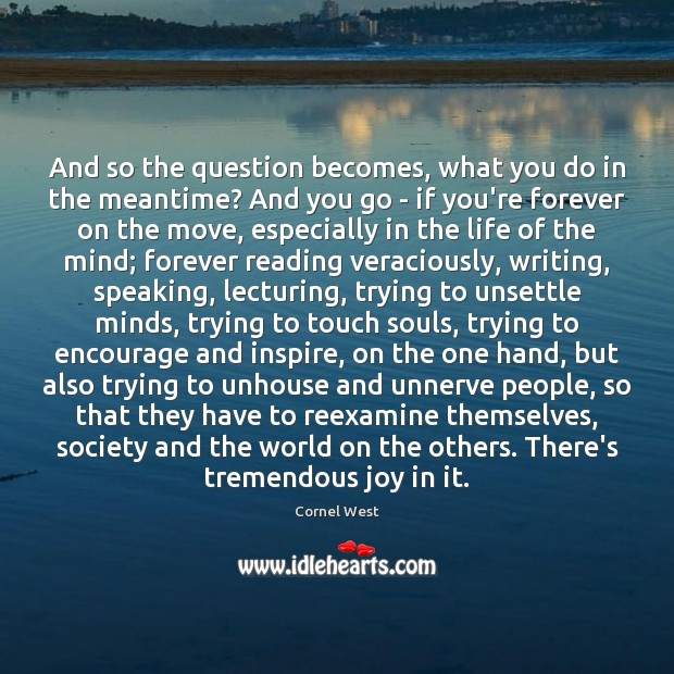 And so the question becomes, what you do in the meantime? And Cornel West Picture Quote